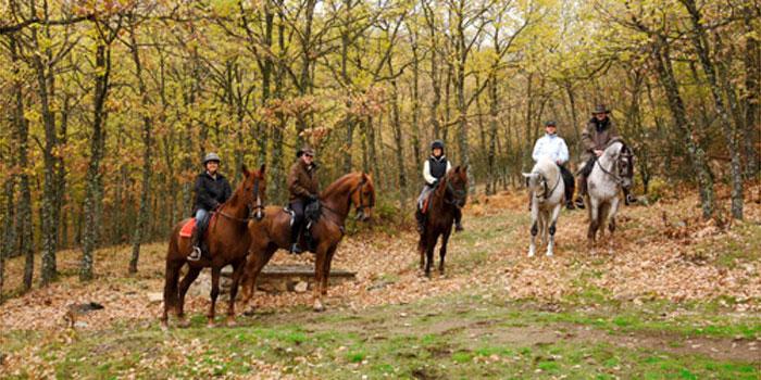 Montar a caballo y tiro con arco